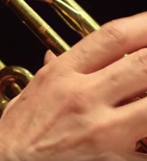 dona-trumpet-02
